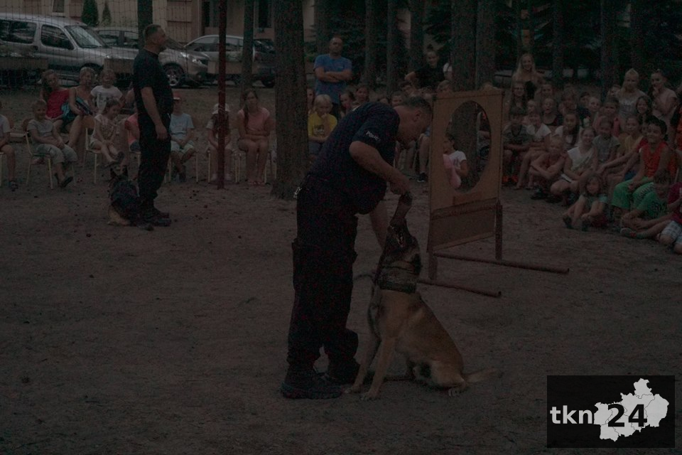 Pokaz psów11