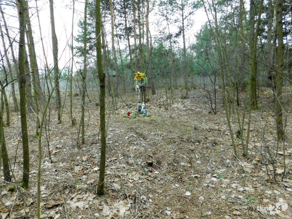 Miejsce rozstrzelania znajduje się w lesie, kilkadziesiąt metrów od głównej drogi biegnącej przez Młynek Nieświński.